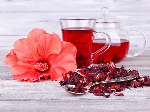 Свойства чая гибискуса