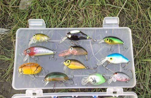 где лучше покупать рыболовные снасти в москве